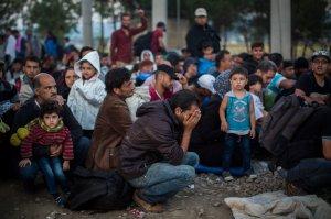 Syrian Refugees Santi Palacios ap photo