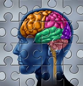 brain-memory-puzzle-120209