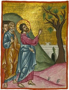 Jesus and the barren fig tree Illumination of an Arabic manuscript Egypt, circa 1684 (photo: The Digital Walters )